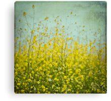Mustard anyone? Canvas Print