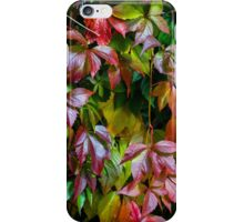 Fall Freshness  iPhone Case/Skin