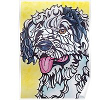 Dog Art #15: Luca the Portuguese Water Dog Poster