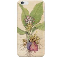 Turmeric Heart iPhone Case/Skin