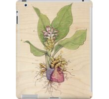 Turmeric Heart iPad Case/Skin