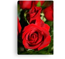 As Red As The Rose Can Get Canvas Print