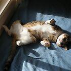 My Hazel is a Floozie ! by Mrswillow