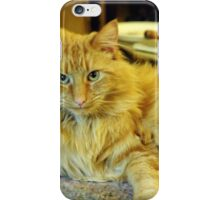 I'm not moving !! iPhone Case/Skin