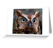 A Screech Owl Named Lana Greeting Card