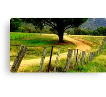 A Line of D Fence Canvas Print