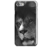 Hey are you ready..for us all to fight for pride..It's our last chance to defend..our war cries to the bitter end..it's my own allegiance to the fight iPhone Case/Skin