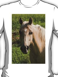Beauty in Nature T-Shirt
