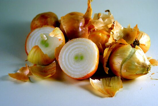 Onions Have Layers by Dana Roper