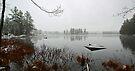 Beaver Pond - Light April Snow -- Bridgton,  Maine by T.J. Martin