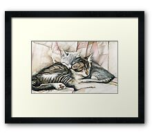 Sleeping Kittens Framed Print