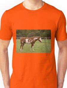 Rodney - Silver Creek Ranch, Ottawa, Ont Unisex T-Shirt