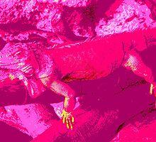 Pink Dragon #3 by Sandra Cockayne