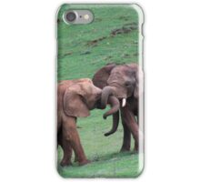 A tangle of trunks iPhone Case/Skin