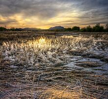 Straw Sunset by Bob Larson