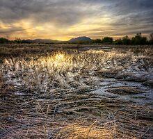 Straw Sunset by Bob Larson