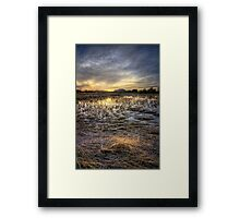 Straw Sunset Framed Print