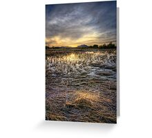 Straw Sunset Greeting Card