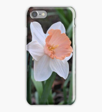Orange and White Daffodil in the Garden iPhone Case/Skin