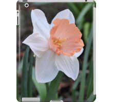 Orange and White Daffodil in the Garden iPad Case/Skin