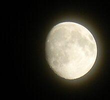 Bright Moon Night by Navigator