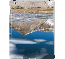 REFLECTIONS AND ICE iPad Case/Skin