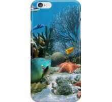 Coral reef and starfish iPhone Case/Skin