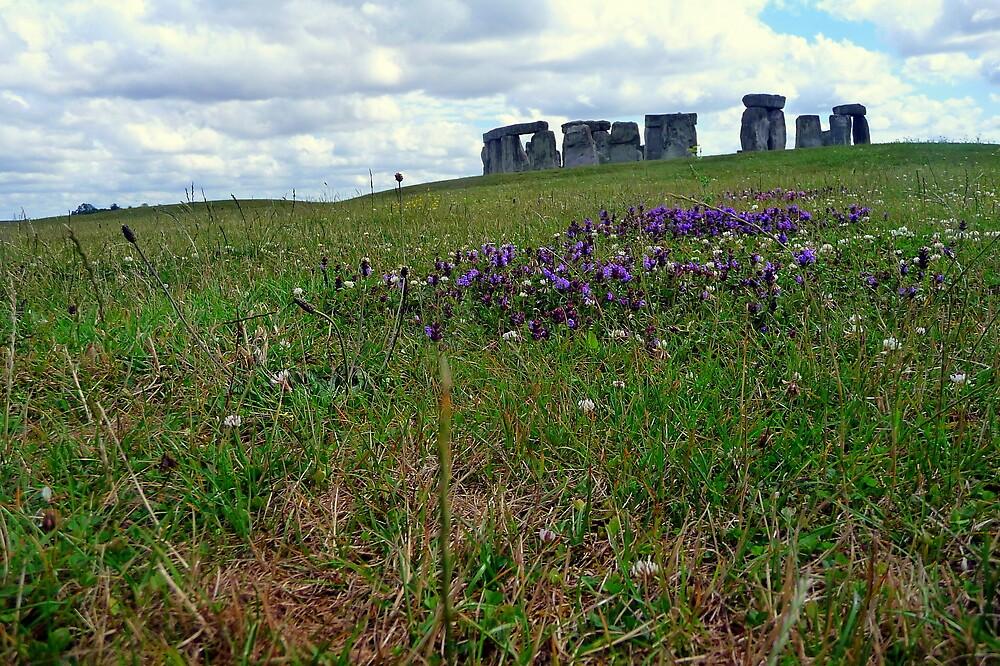 The essense of Stonehenge by leahrenee88