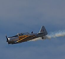TYABB AIR SHOW 6 by Peter Kewley