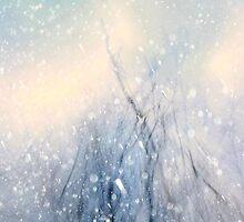 snow storm by waltermassacre