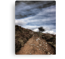 Lonely Tree on Win Hill, Derbyshire Canvas Print