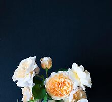 English roses by Ilze Lucero