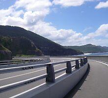 Sea Cliff Bridge by becnbic