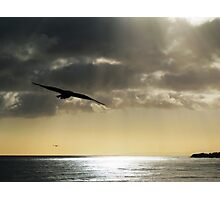 On Birds Wings Photographic Print