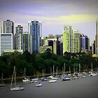 Brisbane  by Shannon O'Brien