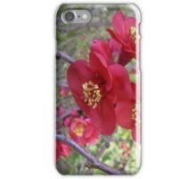 Japonica iPhone Case/Skin
