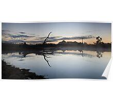 Fallen Tree- Badgery's Creek, NSW Poster