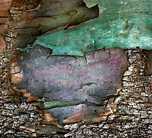 Memories of green by Baska