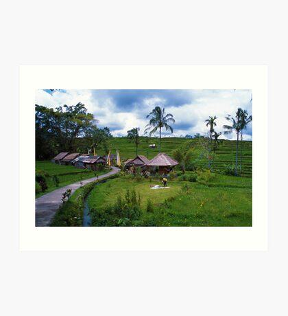 Balinese Village Art Print