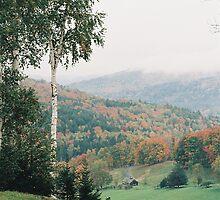 Autumn by Jesse Wheadon