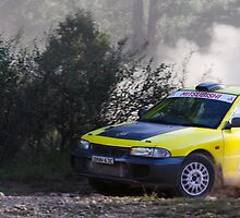 Lithgow Rally 2010: Stage 3 - Car 5 by therkd