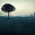 Unsteady by Mikko Lagerstedt