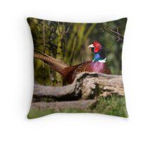 Male Pheasant Throw Pillow