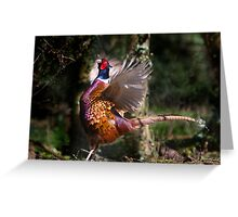 Flapping Pheasant Greeting Card