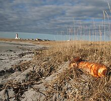 Rusty gas bottles by Alnes Lighthouse. by Jhonny Bakken