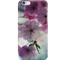 This is why I love spring iPhone Case/Skin