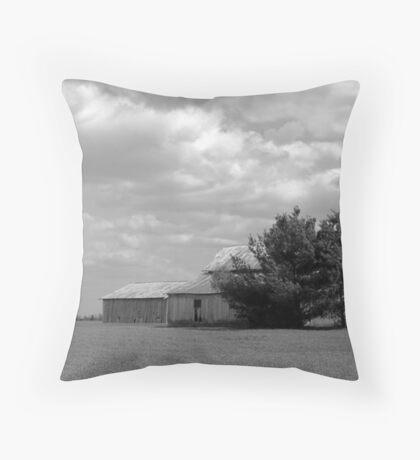 041710-5 Throw Pillow