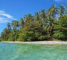 Beach with beautiful tropical vegetation by Dam - www.seaphotoart.com
