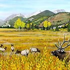 Rocky Mountain Elk by ARTIST4HIRE