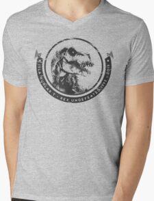 Reigning Champion  Mens V-Neck T-Shirt